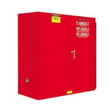 Thermsafe Safety Cabinet