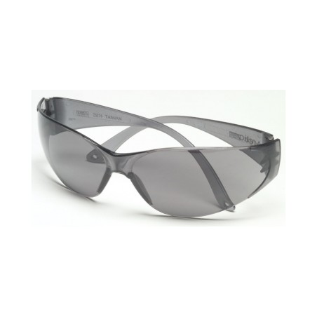 Msa Arctic Eyewear Glass